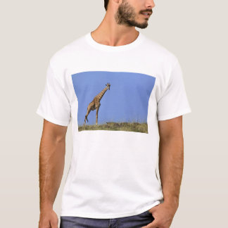 T-shirt Girafe, sur l'arête contre le ciel bleu, Giraffa