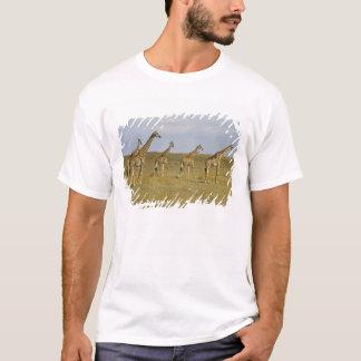 T-shirt Girafes de Maasai errant à travers le Maasai Mara
