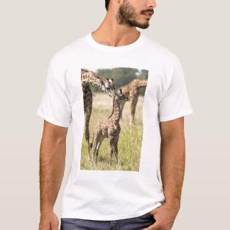 T-shirt Girafes de masai, camelopardalis 2 de Giraffa