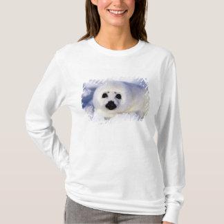 T-shirt Golfe de glace de bébé phoque d'harpe de St