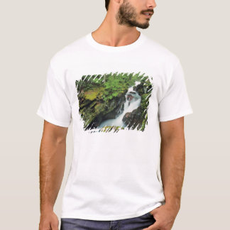 T-shirt Gorge d'avalanche en parc national de glacier