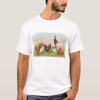 T-shirt Graham - groupe de poulets