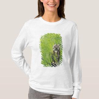 T-shirt Grand hibou à cornes, virginianus de Bubo, jeune