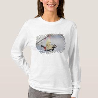 T-shirt Grand pivert repéré (commandant de Dendrocopos),