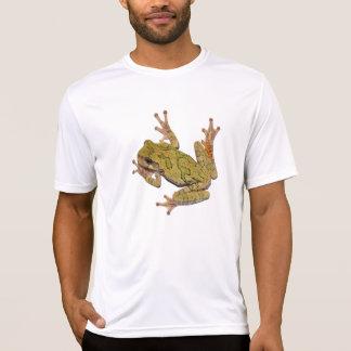 T-shirt Grenouille d'arbre du Missouri