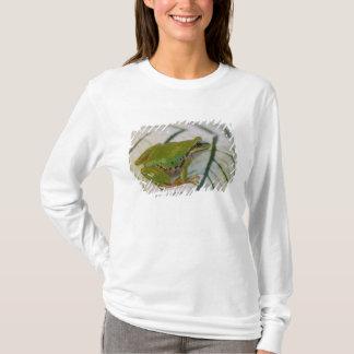 T-shirt Grenouille d'arbre Pacifique sur des fleurs dans