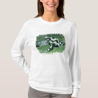 T-shirt Grenouille de dard de poison, (auratus de