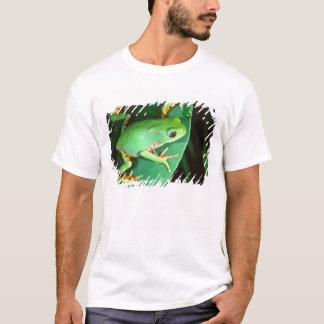 T-shirt Grenouille de singe de jambe de tigre,