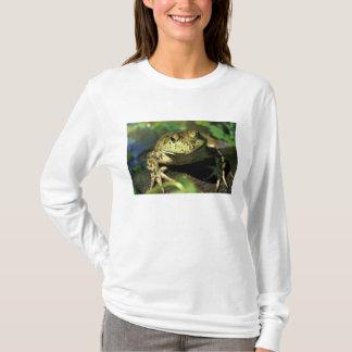 T-shirt Grenouille de Taureau