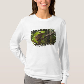 T-shirt Grenouille géante Phyllomedusa de feuille