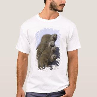 T-shirt Groupe de la mangouste naine sur un monticule de