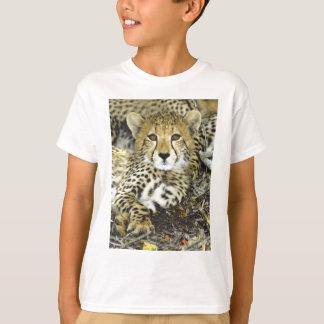 T-shirt Guépard CUB 2
