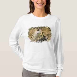 T-shirt Guépard, jubatus d'Acinonyx, toilettage mutuel