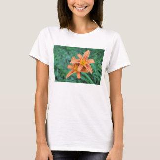 T-shirt Hémérocalle