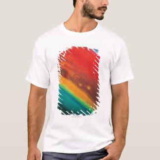 T-shirt Hémisphère nord de Saturns