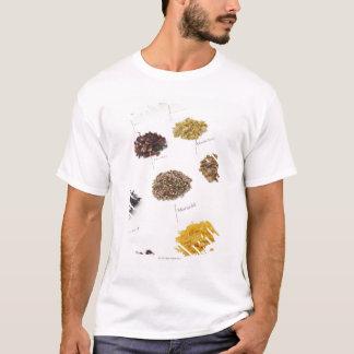 T-shirt Herbes disposées