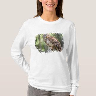 T-shirt Hibou barré (varia de Strix), adulte dans le