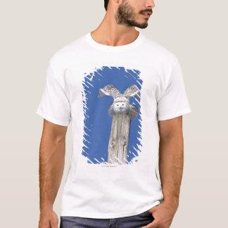 T-shirt Hibou de Milou sur un poteau, préparant pour