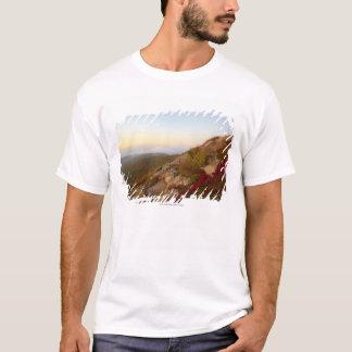 T-shirt Hillside rocheux, fleurs rouges, parc national