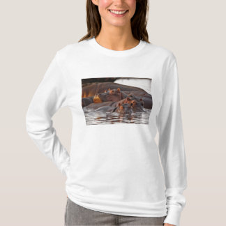 T-shirt Hippopotame, amphibius d'hippopotame, lac