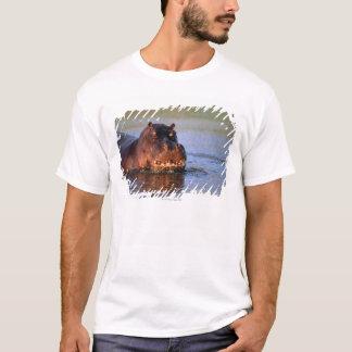 T-shirt Hippopotame en rivière