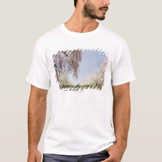 T-shirt Horloge horizontale de cadran solaire dans l'allée