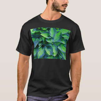 T-shirt Hosta
