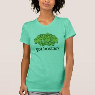 T-shirt Hostas obtenus ?