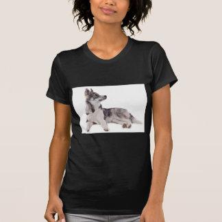T-shirt husky puppy