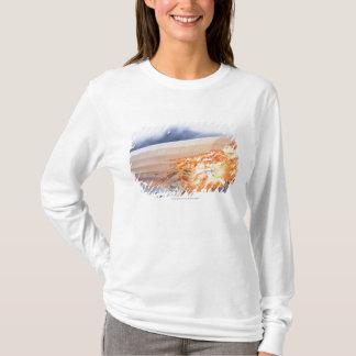 T-shirt Illustration de zeppelin éclatant dans des flammes