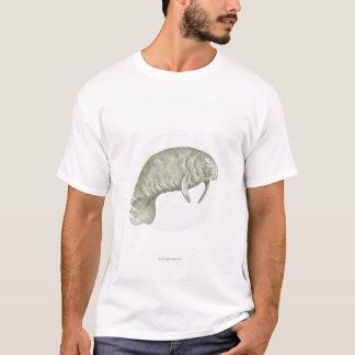 T-shirt Illustration d'un lamantin (espèces de Trichechus)