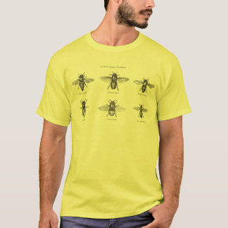 T-shirt Illustration scientifique d'abeilles de miel