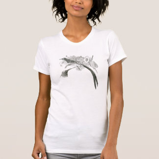 T-shirt Illustration vintage | BW | Sunbirds d'oiseau