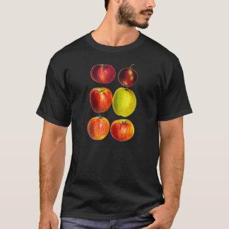 T-shirt Illustration vintage d'Apple Varietiies d'héritage