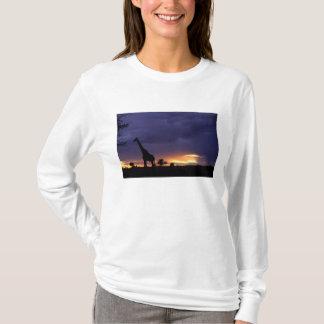 T-shirt Image colorée de fin de l'après-midi de coucher du