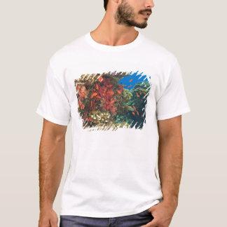 T-shirt instruction de Basslets féerique (Pseudanthias 3