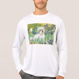 T-shirt Irisis - coton de Tulear 7