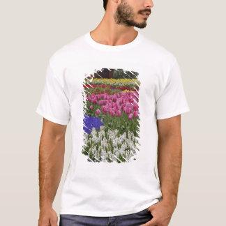 T-shirt Jardin de jacinthe de raisin, de jacinthe et de