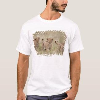 T-shirt 'Jeu Reserve de l'Afrique, Kenya, Mara de masai