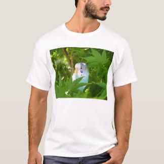 T-shirt Jolie perruche