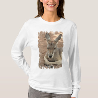T-shirt Kangourou de repos Hoody