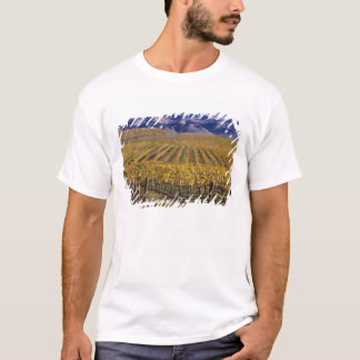 T-shirt La Californie, le comté de San Luis_obispo, vallée