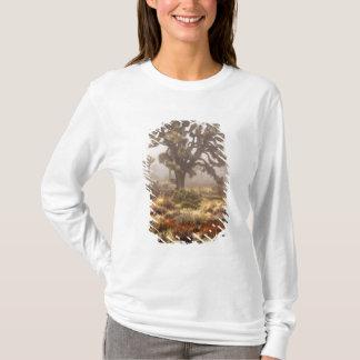 T-shirt La Californie : Monument national d'arbre de
