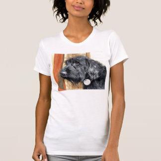 T-shirt La chemise des femmes noires de Labradoodle #1