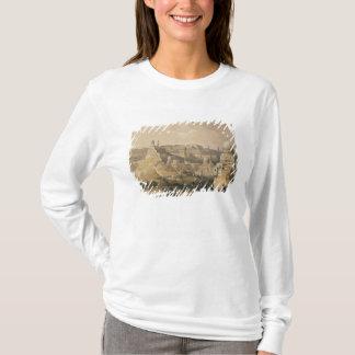 """T-shirt La citadelle du Caire, de """"Egypte et Nubia """""""