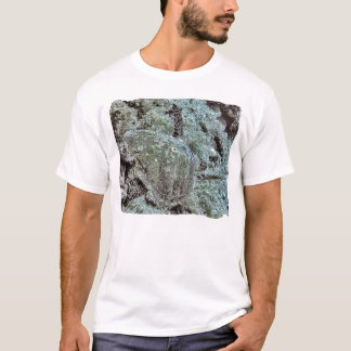 T-shirt La course de la tortue