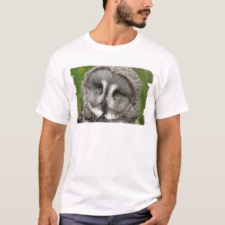 T-shirt La cravate des hommes de hibou de grand gris