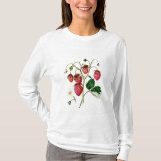 T-shirt La fraise de Roseberry, gravée par Watte