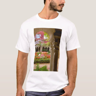 T-shirt La France, St Remy De Provence, cloîtres à