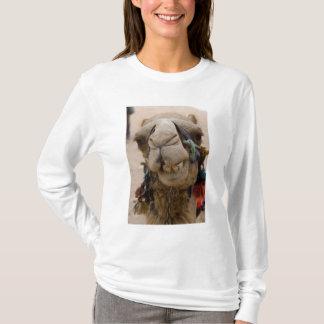 T-shirt La Jordanie, ville antique de Nabataean de PETRA.